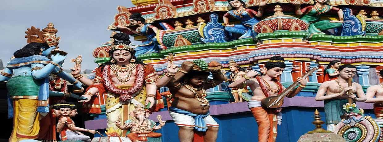 Inde du sud : Spirituel et Vie sauvage